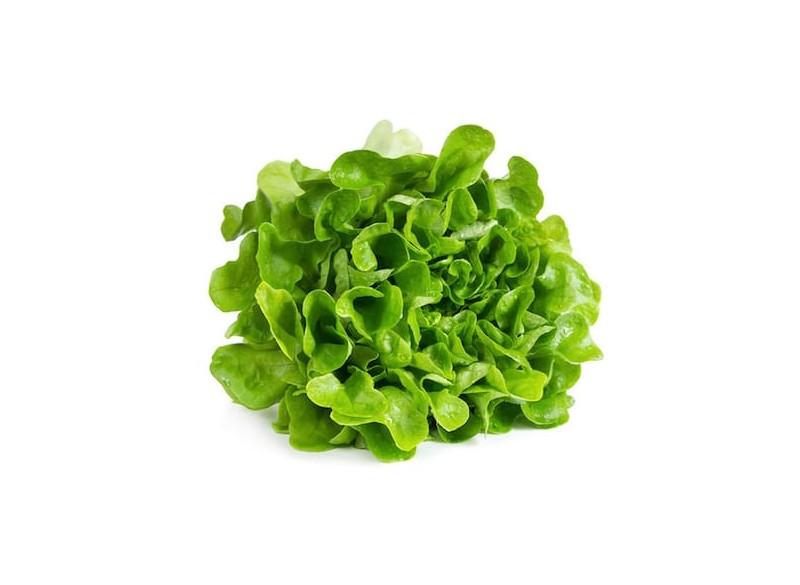 Salade (pièce)